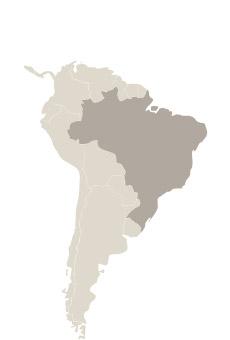 Viajes Brasil