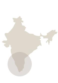 Viaje al Sur de India