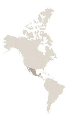 Viajes México