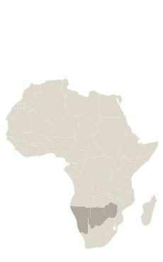 Viaje Namibia & Botswana Luxury Travel