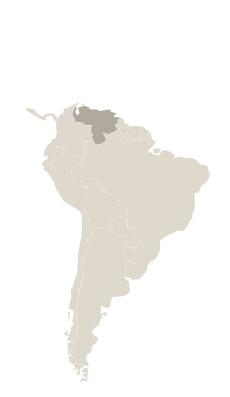 Viajes Venezuela