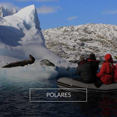 Explora nustros viajes de lujo a zonas polares